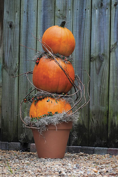 A spooky pumpkin topiary (Courtesy of Armstrong Garden Centers)