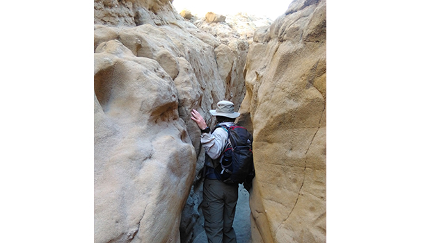 The Slot is one of Anza-Borrego's most popular trails for hikers. (Courtesy of Anza-Borrego Foundation)